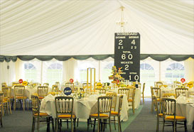 Full view of cricket themed marquee