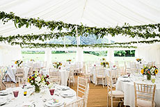 Marquee with Leafy Ceiling Decoration
