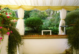 Garden showing through open walls of the marquee