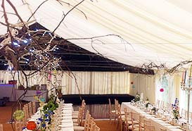 Fairy lights attached to branches on marquee roof