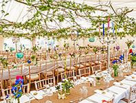 Marquee with hanging leaf canopy