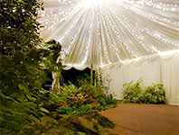 Tent with fairy lights