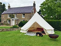 Bell tent with dog
