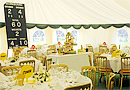 Cricket theme marquee