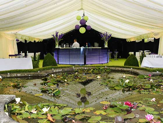 Party marquee using natural features
