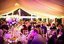 Pretty marquee lighting