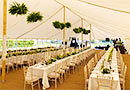 Wedding marquee 2018 style